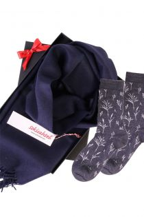 Alpaca wool scarf and SEASIDE socks gift box for women | BestSockDrawer.com