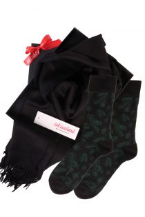 Alpaca wool scarf and TREEPEOPLE socks gift box for men   BestSockDrawer.com