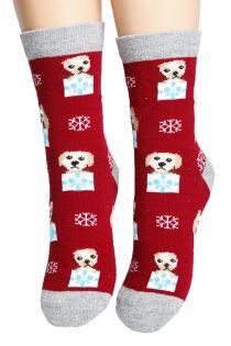 SURPRISE red cotton socks for children | BestSockDrawer.com