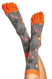 FOX patterned toe socks for men and women | BestSockDrawer.com