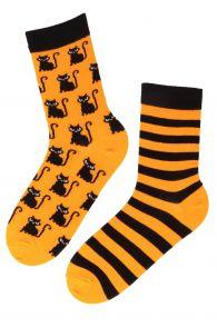 BETTER cotton socks with kittens   BestSockDrawer.com