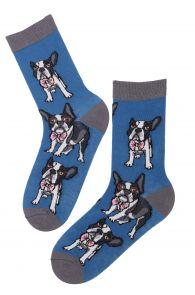 FRENCHIE cotton socks | BestSockDrawer.com