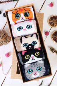 KITTY gift box containing 5 pairs of socks   BestSockDrawer.com