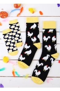 BABYEGG family gift box with 3 pairs of socks | BestSockDrawer.com