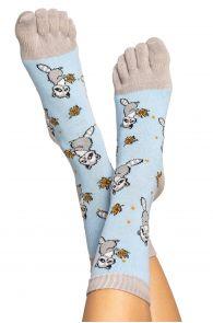 RACOON patterned toe socks for men and women | BestSockDrawer.com